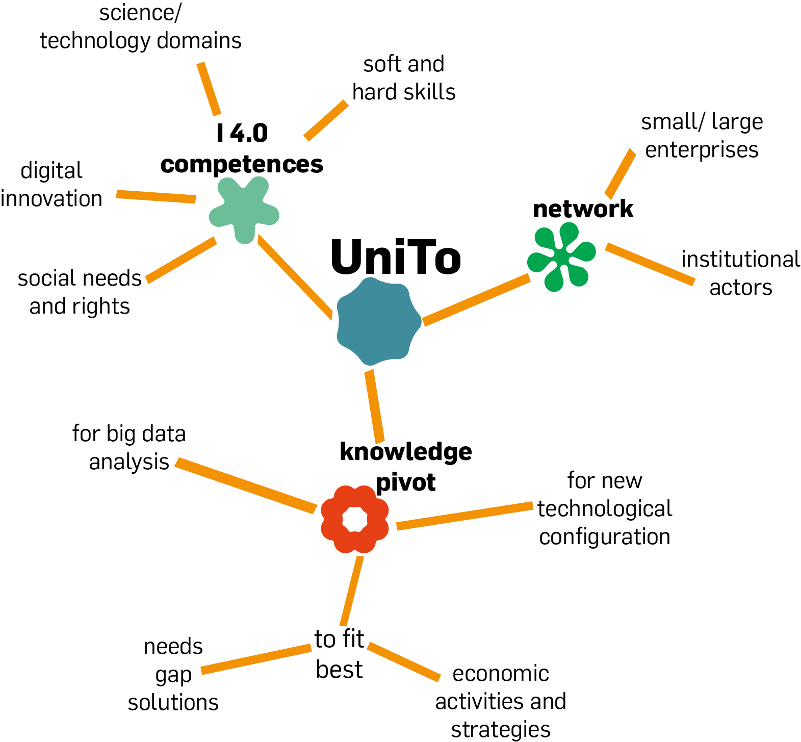 Chart with UniTo's competencies